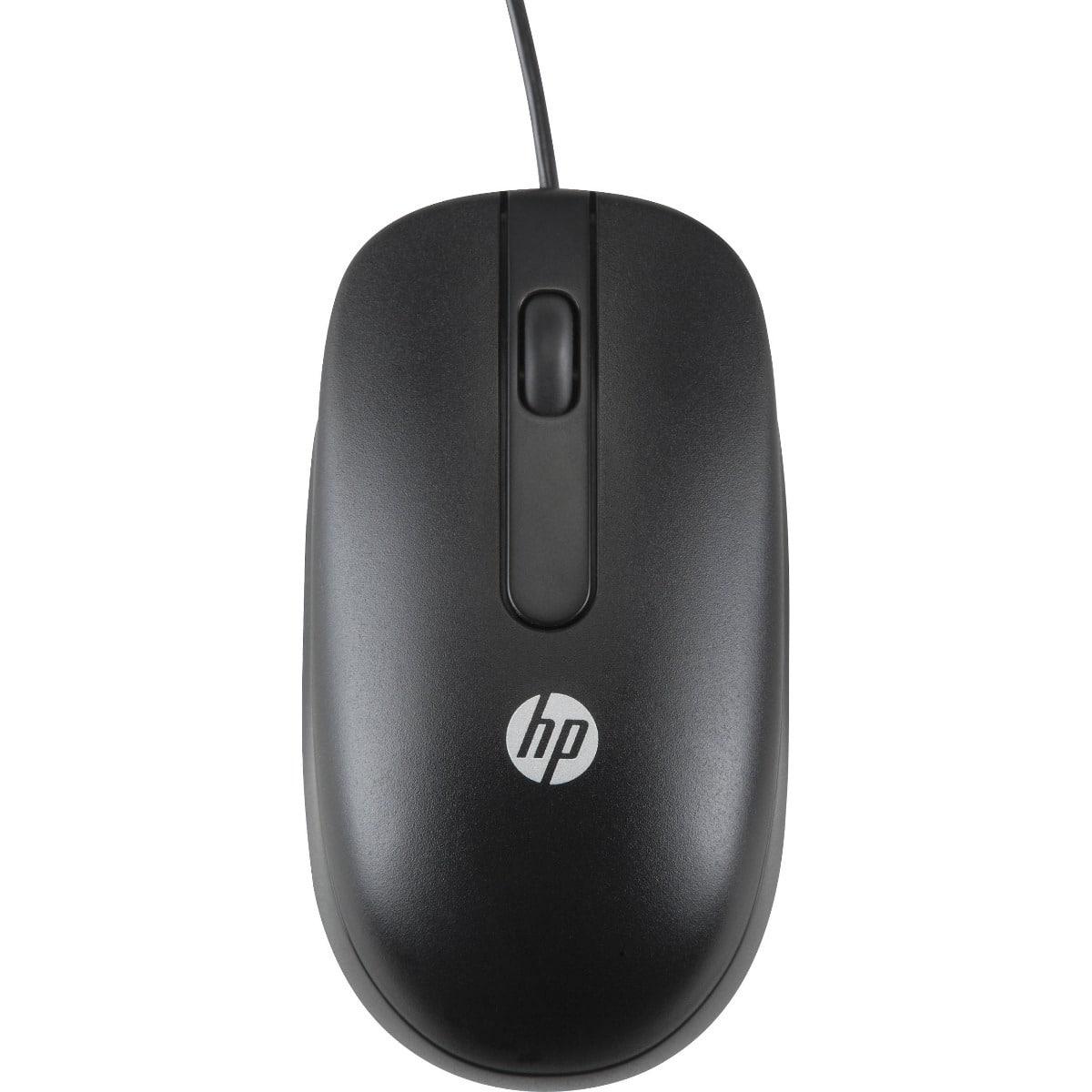 evolucion del mouse