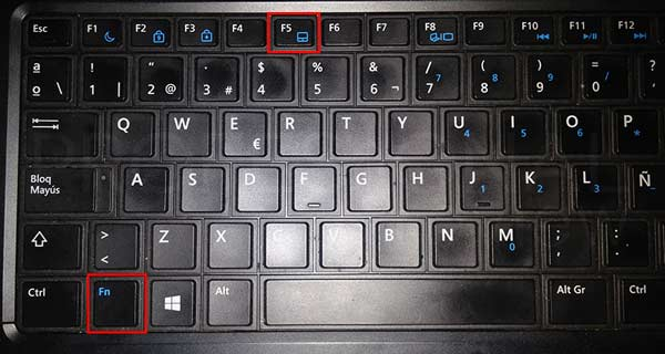 desactivar el touchpad windows 10